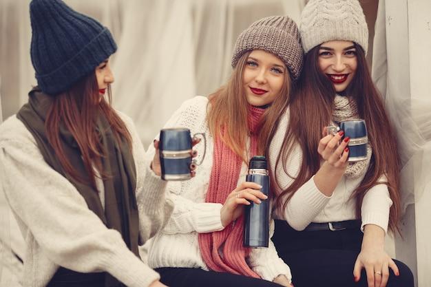 Amis Dans Un Parc D'hiver. Filles Dans Un Chapeau Tricoté. Les Femmes Avec Thermos Et Thé. Photo gratuit