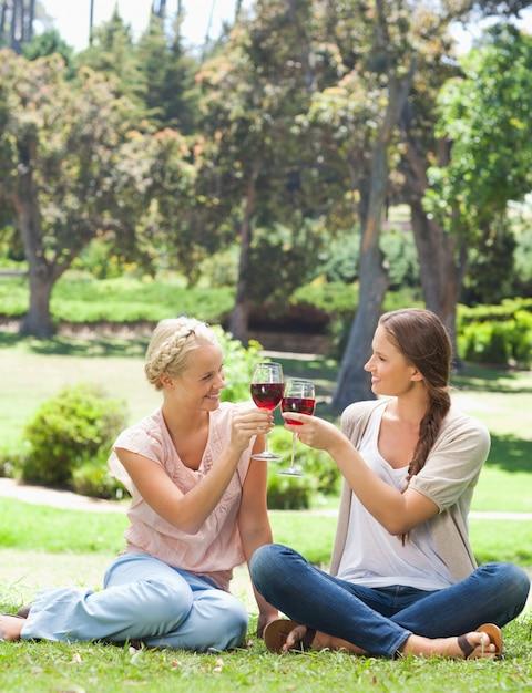 Amis tinter les verres de vin dans le parc Photo Premium