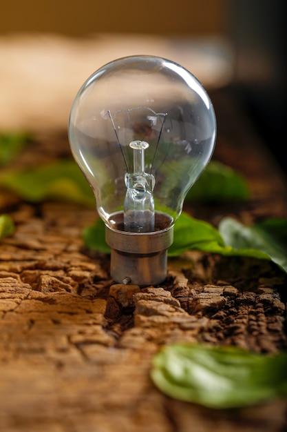 Ampoule avec feuille verte sur fond en bois Photo Premium