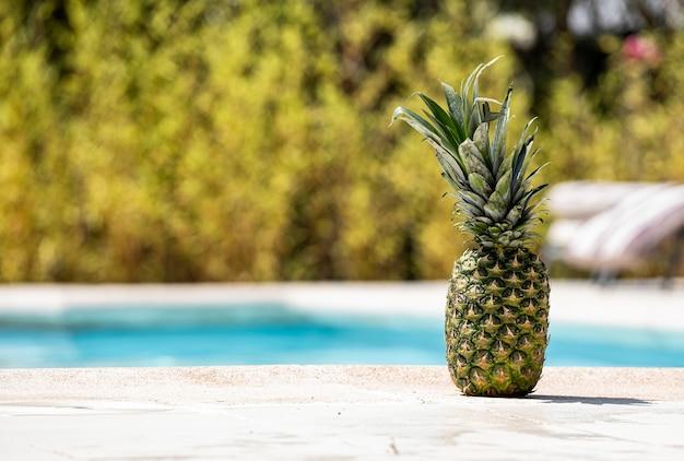 Ananas au bord d'une piscine. Photo Premium