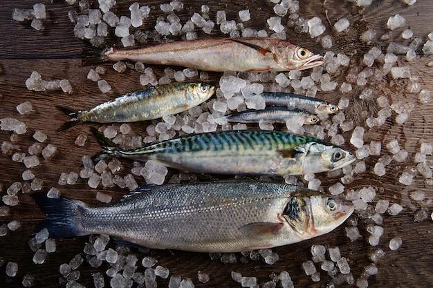 Anchois au maquereau de sardine de bar Photo Premium