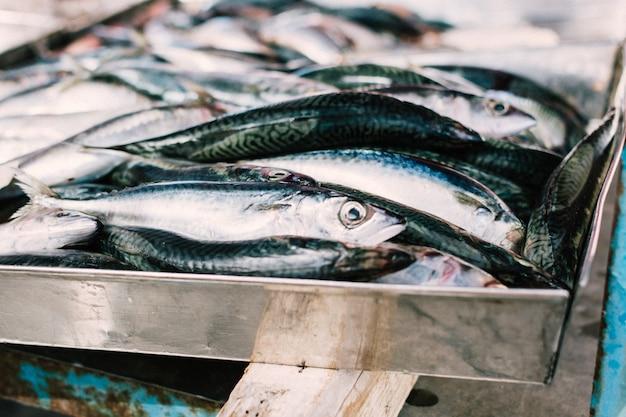 Anchois crus au marché aux poissons Photo gratuit