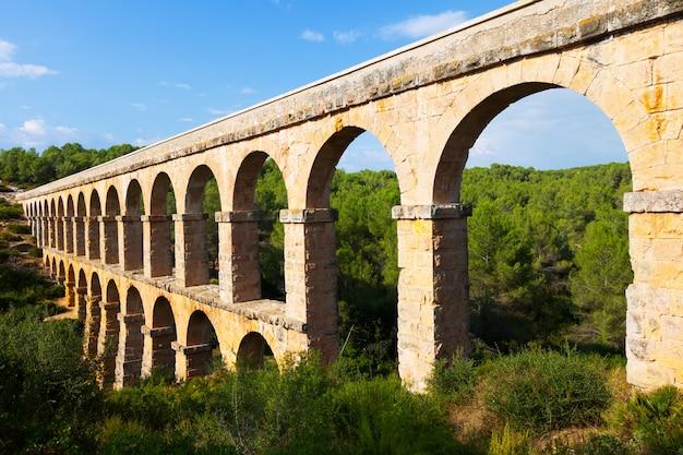 Ancien Aqueduc Dans La Forêt De L'été. Tarragona Photo gratuit