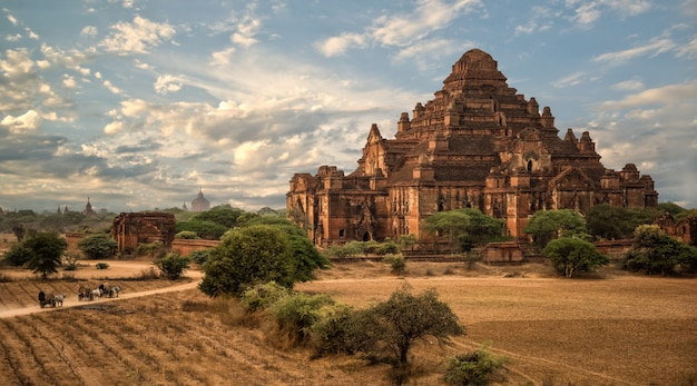 Anciens temples à bagan, myanmar Photo Premium