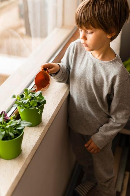 Angle élevé Du Petit Enfant Arrosant Les Plantes Par La Fenêtre Photo gratuit