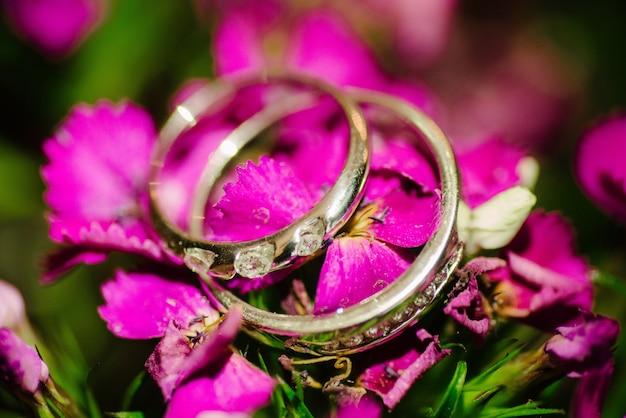 Les anneaux de mariage se trouvent sur une fleur rose se bouchent Photo Premium