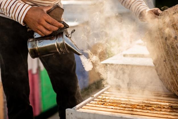 Un apiculteur fume des abeilles en train de récolter du miel Photo Premium