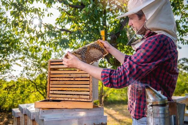 Apiculteur vérifiant les ruches Photo Premium