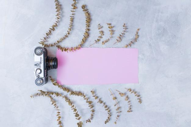 Appareil photo rétro près de papier rose entre ensemble de brindilles de plantes sèches Photo gratuit