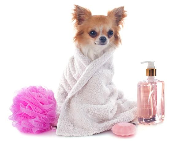 Après le bain Photo Premium