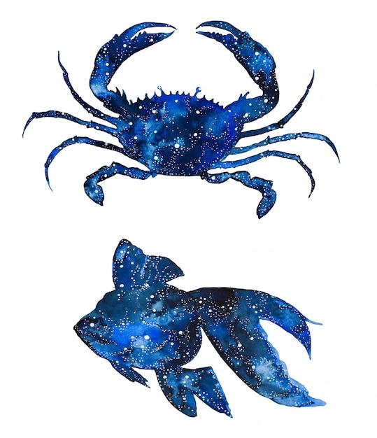 Aquarelle Animaux De La Galaxie De La Mer. Crabes Et Poissons Peints à La Main. Photo Premium
