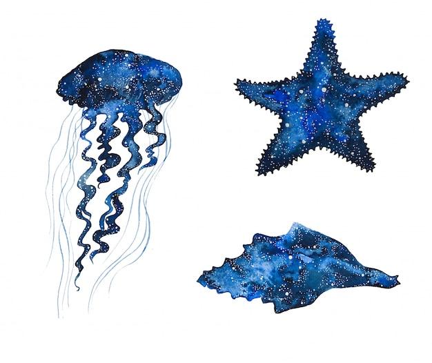 Aquarelle Animaux De La Galaxie De La Mer. Méduse Peinte à La Main, étoile De Mer Et Coquillage. Photo Premium
