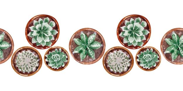 Aquarelle border collection de cactus en pots Photo Premium