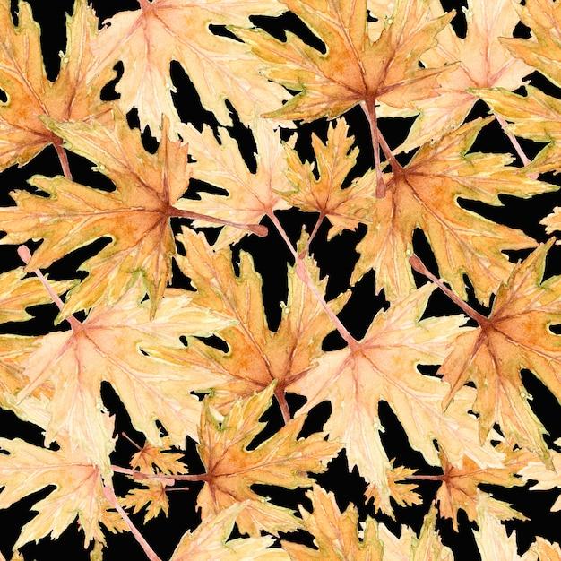 Aquarelle érable automne feuilles modèle sans couture sur fond noir. dessinés à la main. Photo Premium