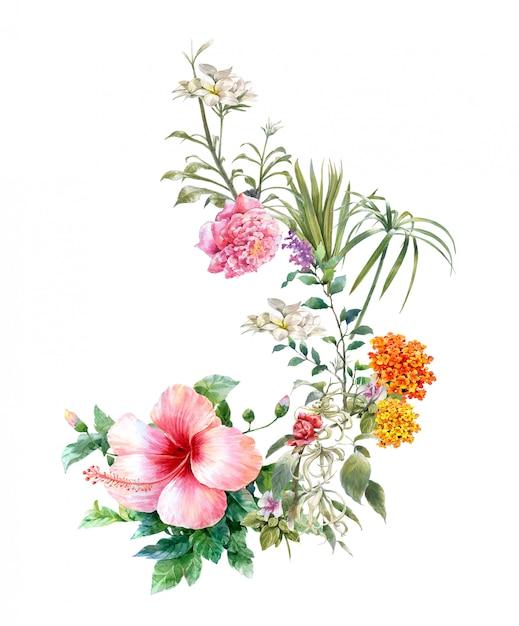 Aquarelle de feuilles et de fleurs, sur blanc Photo Premium