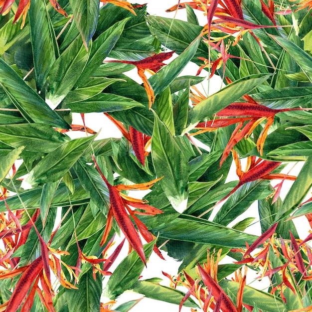 Aquarelle de feuilles et de fleurs, modèle sans couture Photo Premium
