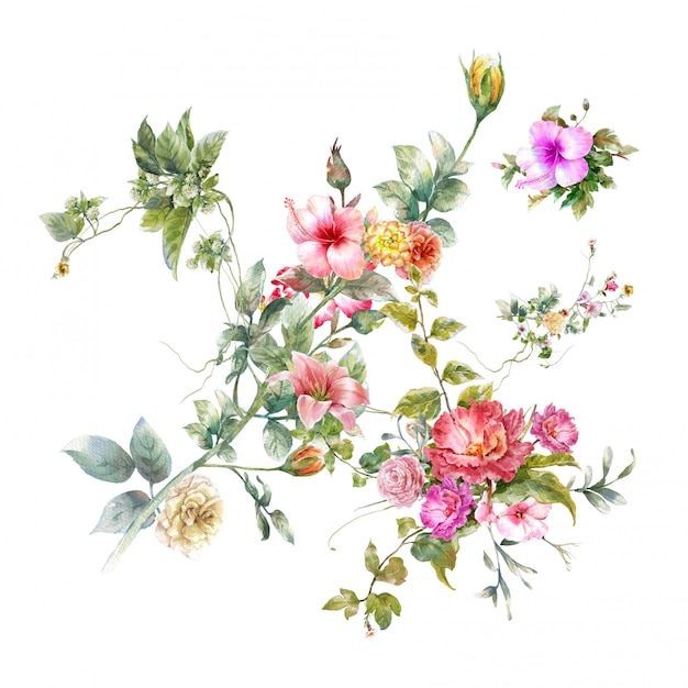 Aquarelle De Feuilles Et De Fleurs Photo Premium