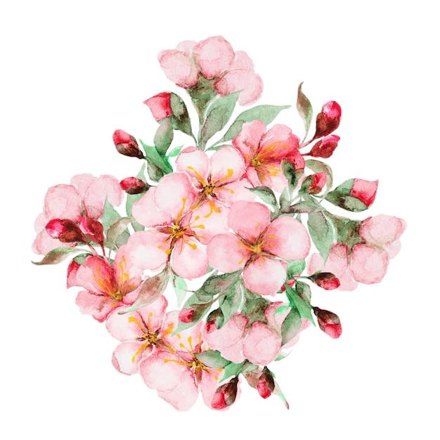 Aquarelle de fleurs de sakura Photo Premium