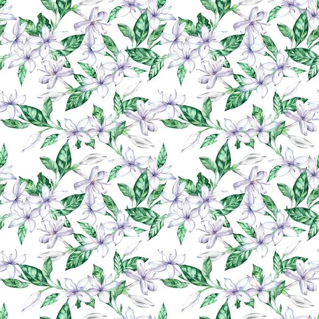 Aquarelle modèle sans couture avec des fleurs de café blanc et des feuilles vertes. Photo Premium