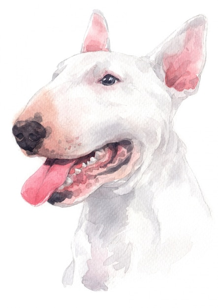 Aquarelle, race de chien blanc, bull terrier Photo Premium