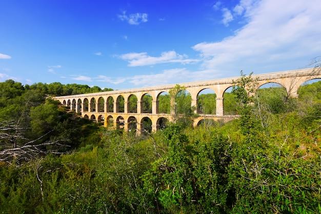 Aqueduc Antique Dans La Forêt De L'été. Tarragona Photo gratuit