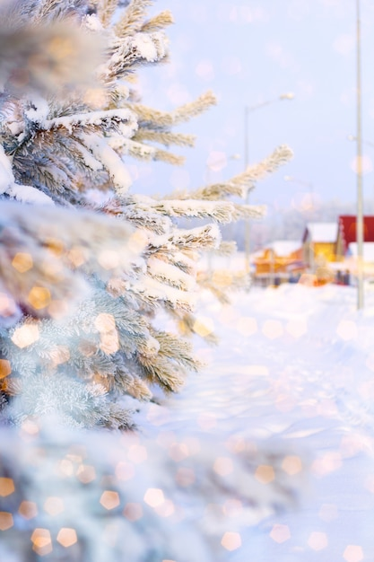 Arbre de noël recouvert de neige, peint bokeh magique brillant Photo Premium