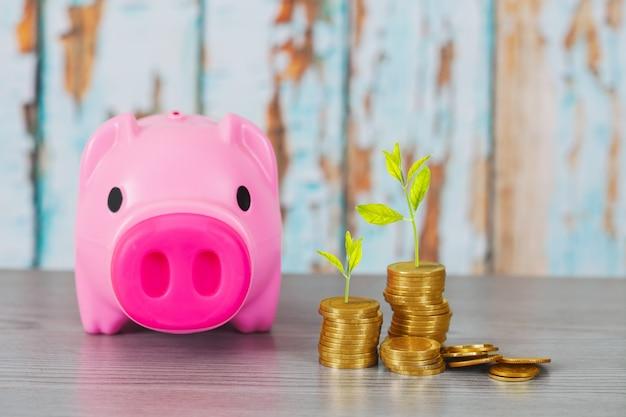 Arbre qui pousse sur la pile de pièces, concept de croissance de l'investissement. Photo Premium