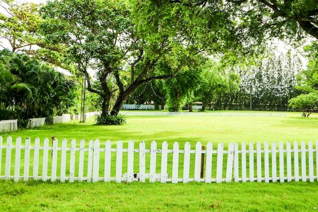 Arbre vert et herbe verte dans la clôture en bois de jardin Photo Premium