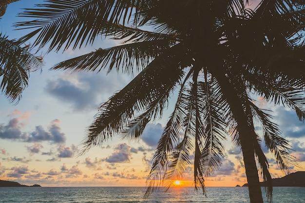 Arbres plage île magnifique côte Photo gratuit