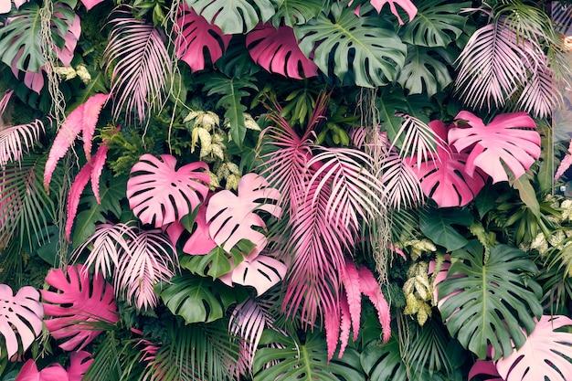 Arbres tropicaux disposés en arrière-plan ou plein mur il y a des feuilles de différentes tailles Photo Premium