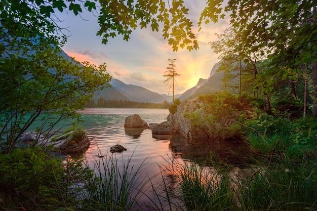 Arbres Verts Près D'un Plan D'eau Pendant La Journée Photo gratuit