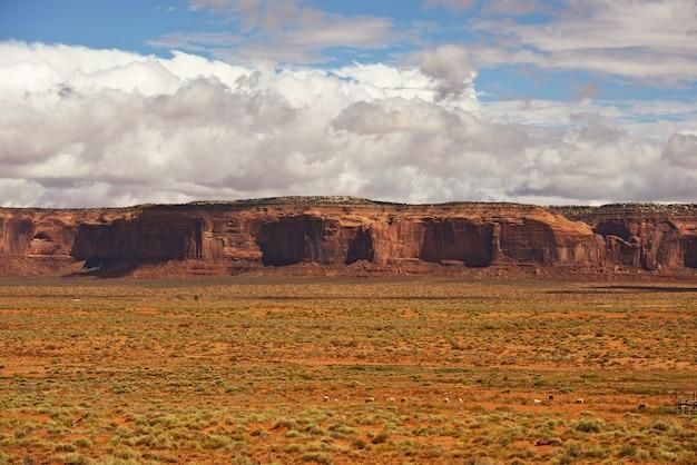 Arizona raw landscape Photo gratuit