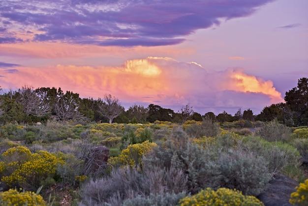 Arizona sunset Photo gratuit