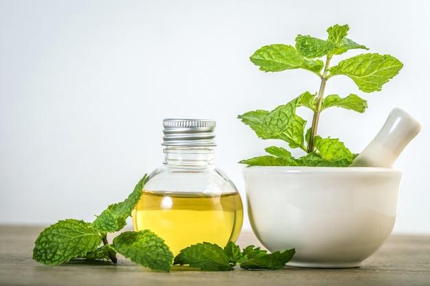 Aroma huile essentielle d'une menthe poivrée dans la bouteille Photo Premium