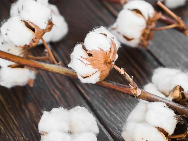 Arrangement Avec Des Fleurs De Coton Sur Fond De Bois Photo gratuit