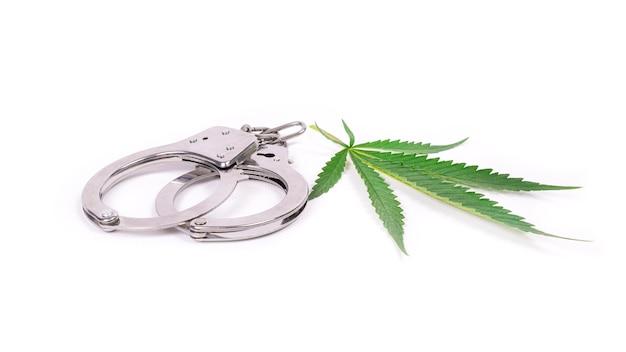 Images Controle Cannabis | Vecteurs, photos et PSD gratuits