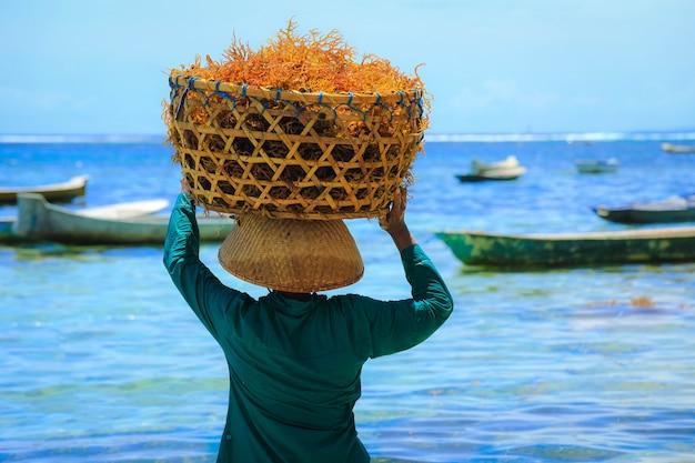 L'arrière De La Femme Porte Un Panier D'algues Orange Sur Sa Tête à La Ferme D'algues Nusa Penida Island à Bali, Indonésie Photo Premium