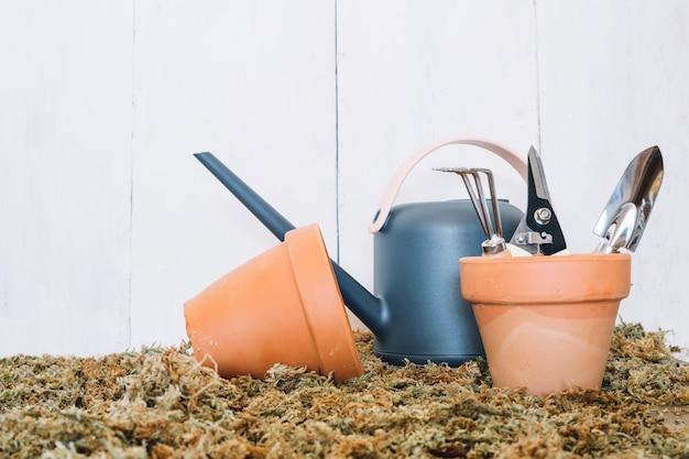 Arrosage pot entre les pots avec des outils Photo gratuit