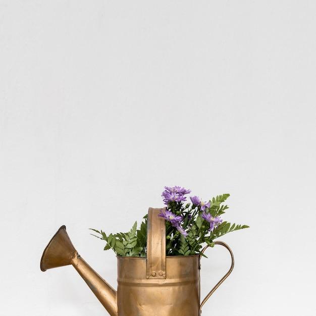 Arrosoir en cuivre avec des fleurs Photo gratuit