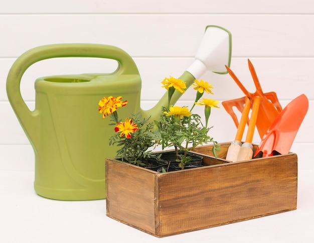 Arrosoir près des fleurs et équipement de jardin dans une boîte près du mur Photo gratuit
