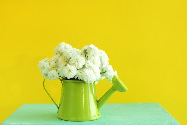 Arrosoir vert miniature avec un bouquet de fleurs blanches sur une boîte en bois bleue. fond jaune vif. Photo Premium