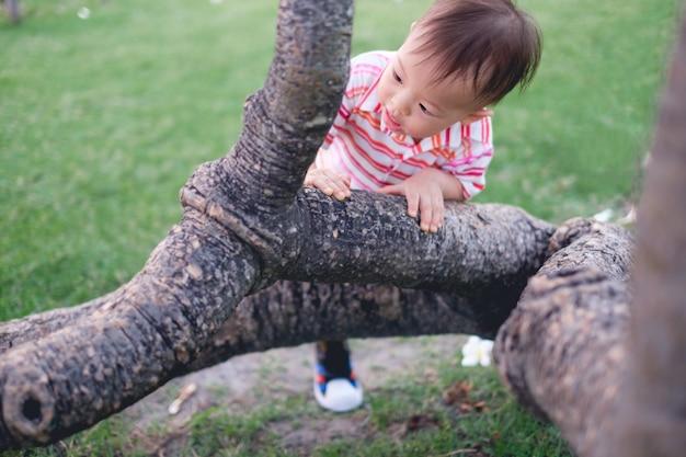 Asiatique 18 mois / 1 an enfant garçon s'amusant en essayant de grimper sur l'arbre dans un parc sur la nature Photo Premium