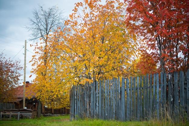 Automne Doré Dans Les Zones Rurales, Russie, Oural Photo Premium