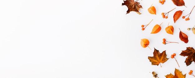 Automne fond plat sur blanc Photo gratuit