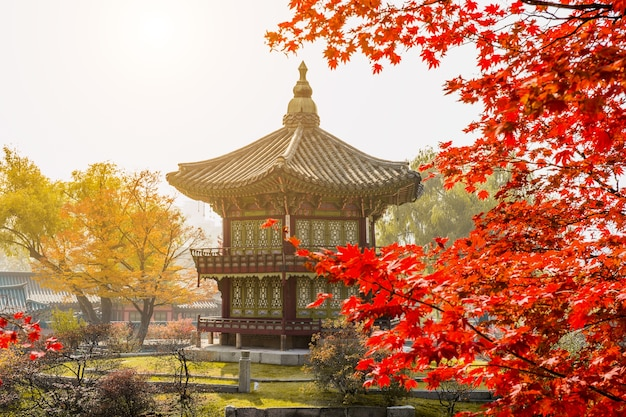 L'automne à Gyeongbokgung Palace, Séoul En Corée Du Sud. Photo gratuit