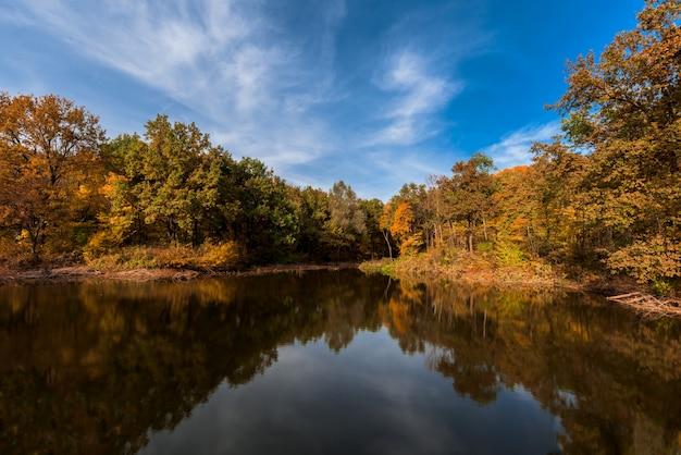 L'automne. lac avec une surface de miroir et des arbres jaunes sur la rive. Photo Premium