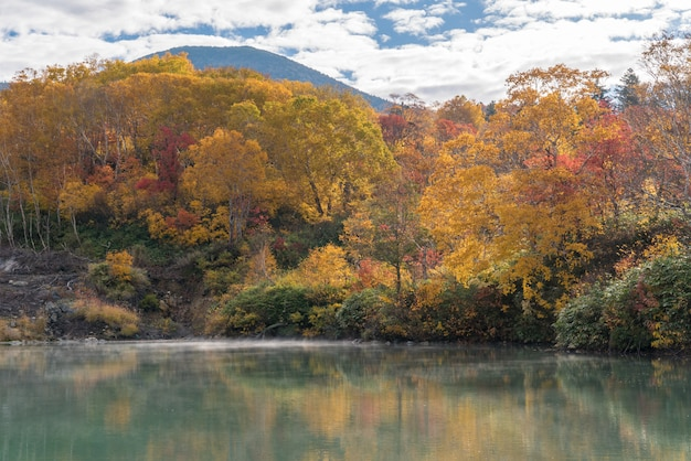 Automne onsen lac aomori japon Photo Premium