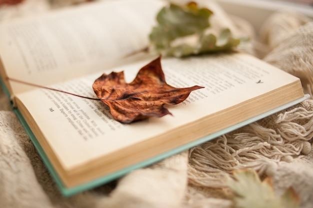 Automne toujours la vie. un livre ouvert est couché sur un tapis beige, les feuilles tombées en automne sont couchées sur le livre Photo Premium