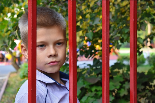 Les Autorités De Tutelle Sélectionnent Les Enfants. Justice Pour Mineurs. Déchéance Des Droits Parentaux. Photo Premium