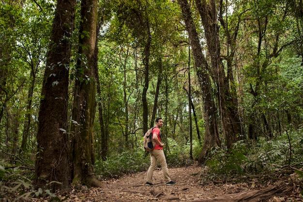 Backpacker sur le sentier en jungle Photo gratuit